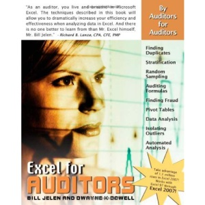 Excel For Auditors: Audit Spreadsheets Using Excel 97 Through Excel 2007 (Excel for Professionals)