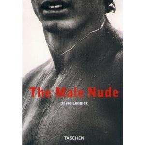 The Male Nude (Klotz)