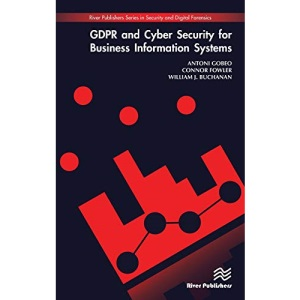 GDPR and Cyber Security for Business Information Systems (River Publishers Series in Security and Digital Forensics)