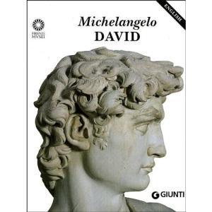 Michelangelo: David (Great Masterpieces)