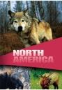 Wildlife - Secret Animals Of North America [DVD]