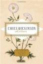 Emily Dickinson Letters (Everyman