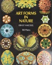 Art Forms in Nature (Picture Archives)