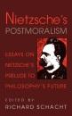 Nietzsche's Postmoralism: Essays on Nietzsche's Prelude to Philosophy's Future - Richard Schacht