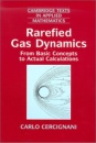 Rarefied Gas Dynamics: From Basic Concepts to Actual Calculations (Cambridge Texts in Applied Mathematics) - Carlo Cercignani