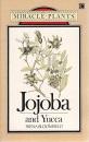 Jojoba and Yucca (Miracle Plants)