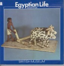 Egyptian Life (Introductory Guides)