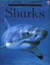 Sharks (Usborne Discovery Programme)