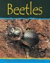 Beetles (Minibeasts) - Claire Llewellyn