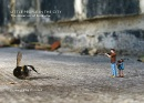 Little People in the City: The Street Art of Slinkachu (foreword by Will Self)