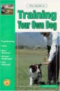 Guide to Training Your Own Dog