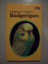A Beginner's Guide to Budgerigars