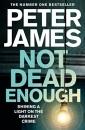 Not Dead Enough (Roy Grace)