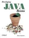 Developing Java Beans (Java (Addison-Wesley))