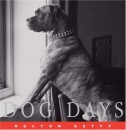 Dog Days (Hulton Getty Picture Library)