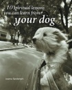 10 Spiritual Lessons You Can Learn from Your Dog