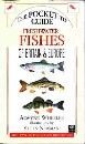 Freshwater Fishes of Britain and Europe (Compact Guides series)