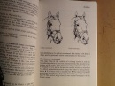 The Manual of Stable Management: Saddlery Bk. 4
